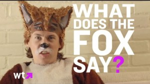 Still from What Does the Fox Say video