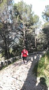 fitnesswalking