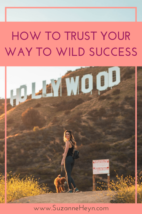 soulful dreamers' guide to trusting yourself to wild success manifest your dreams purpose destiny