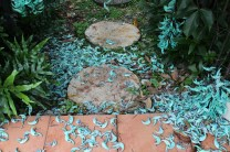 "Jade Vine ""petals"""