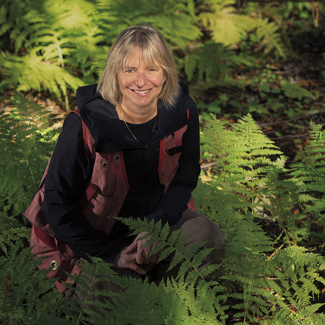 """suzanne simard is a professor of forest ecology at the university of british columbia and the author of """"finding the mother tree."""" Events Suzanne Simard Author And Professor Of Forest Ecology"""