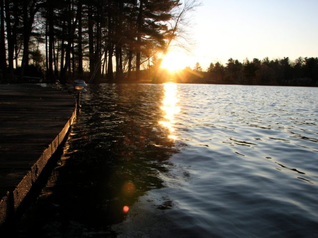 Sitting on the dock with my first cup of coffee, and a brilliant sunrise on Flannagan Pond. It's gonna be a great day at Suzanne's Cottage.