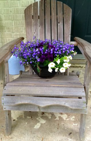flowers in the chair