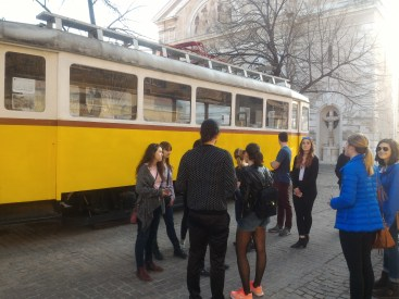 Tram in Pécs