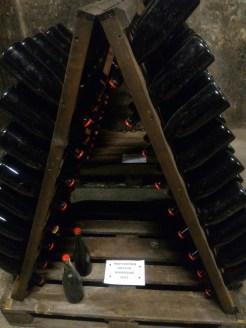 Pinot Noir Rose pezsgő in the works (traditional bottle fermentation method)