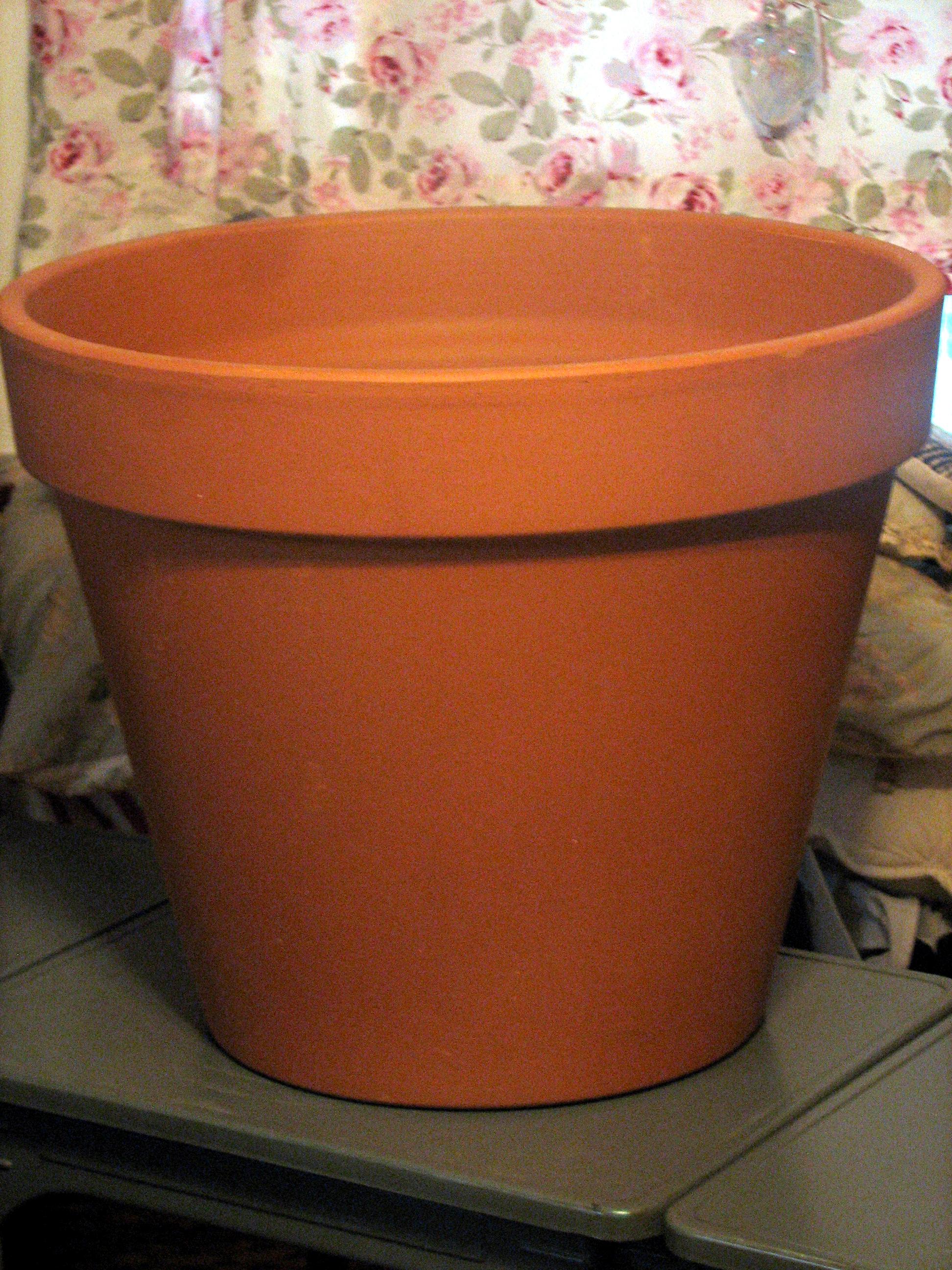 empty-pot
