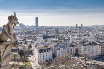 Paris from top of Notre Dame