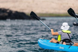 Guests Explore Waters Around Santa Fe Island and Plazas