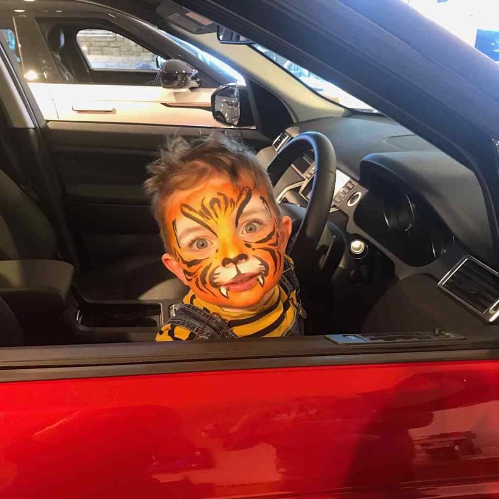 Tiger in a car Face Paint
