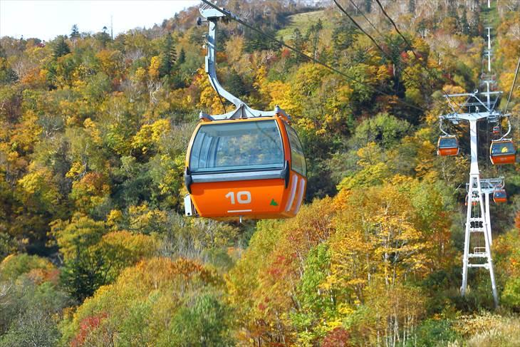 札幌国際スキー場の紅葉