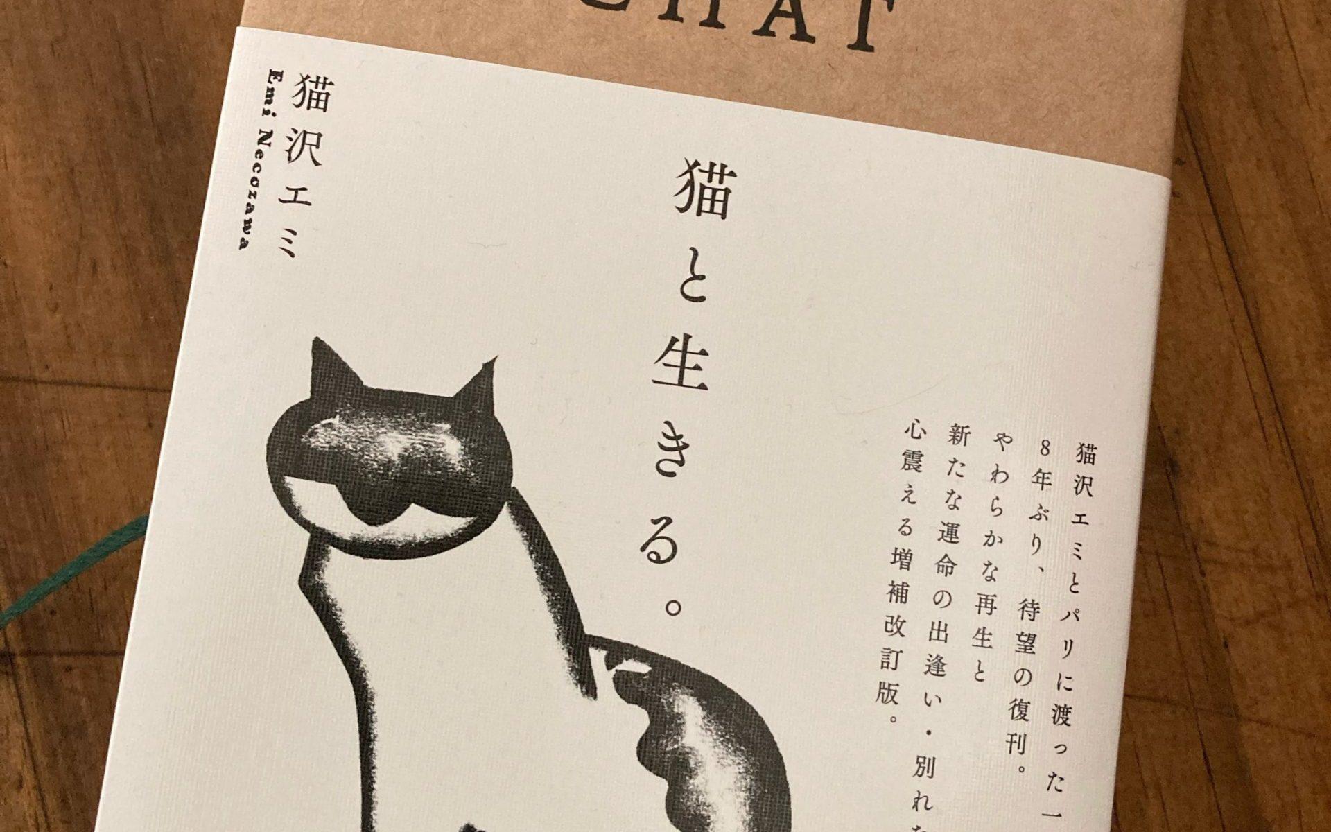 猫と生きる