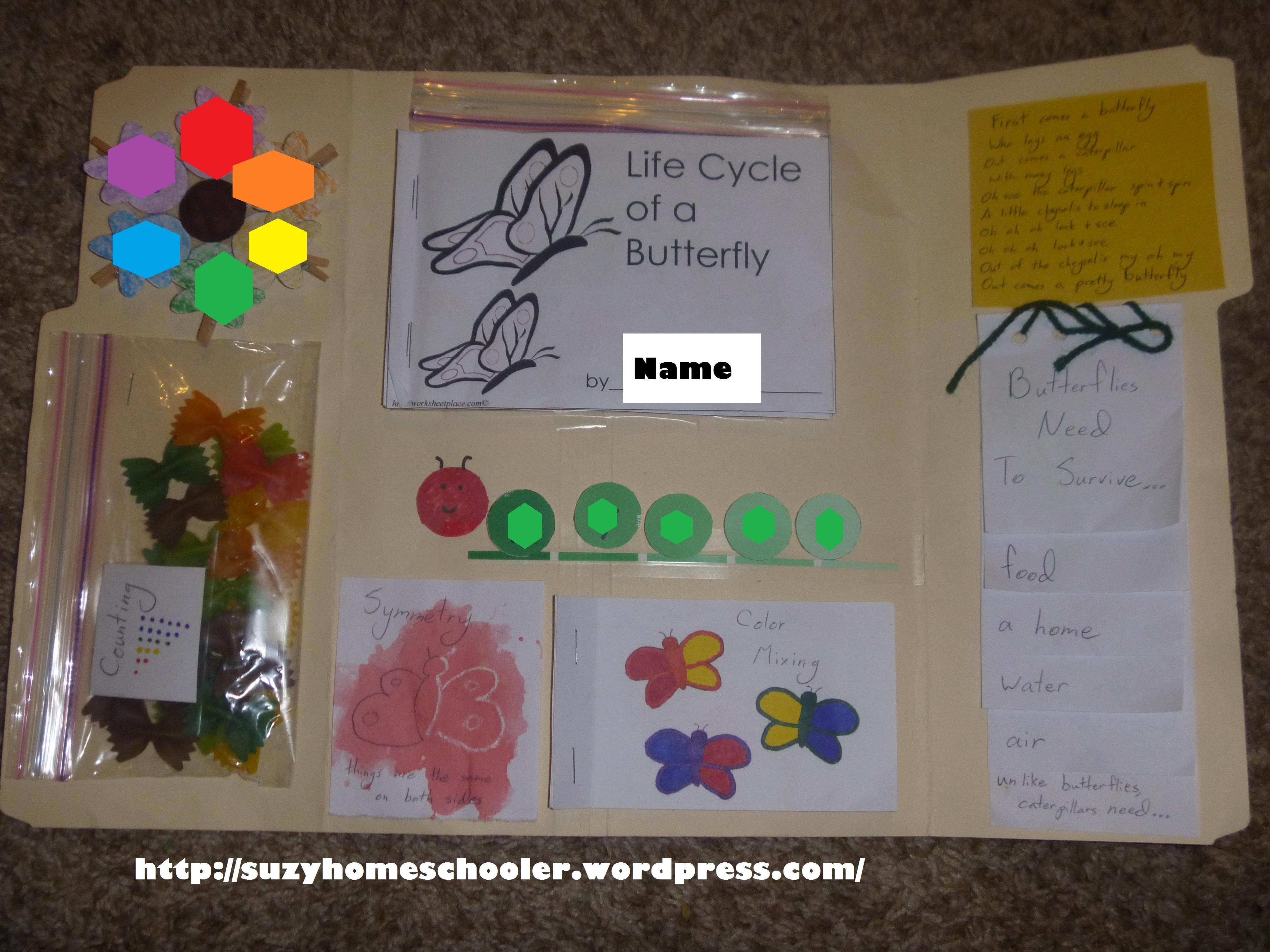 Butterfly Lapbook Suzy Homeschooler