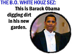 250wde_bo-whitehouselie-2