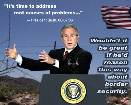 440wde_Bush_Root_Causes-Of-Problems
