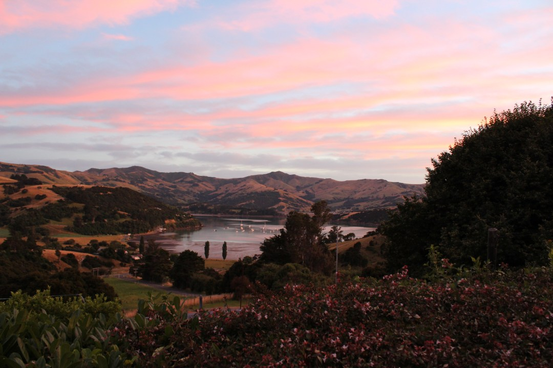 Sun rises turning the sky pink and blue over French Farm bay and Banks Peninsula mountains near Akaroa
