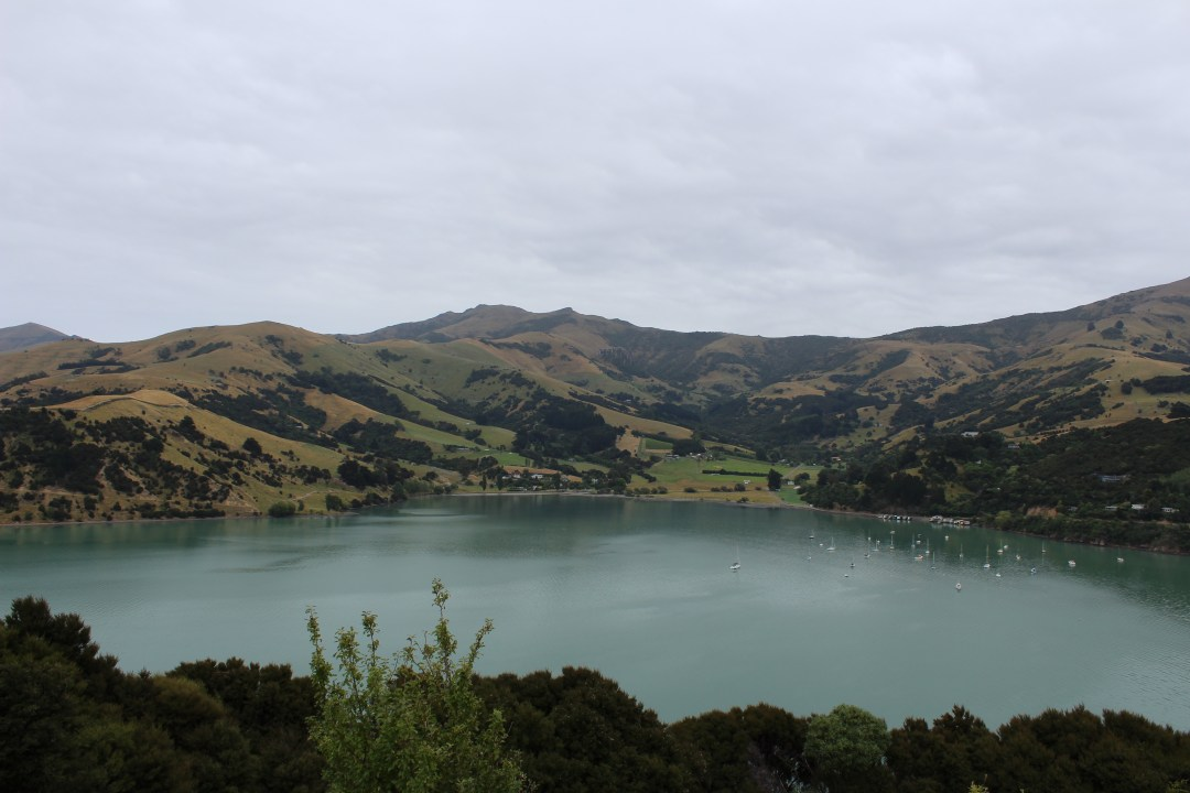 Peninsula views from Onawe Track, Banks Peninsula New Zealand