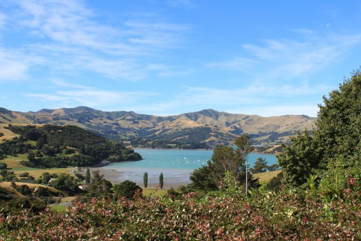 Bay views in Banks Peninsula, Christchurch New Zealand