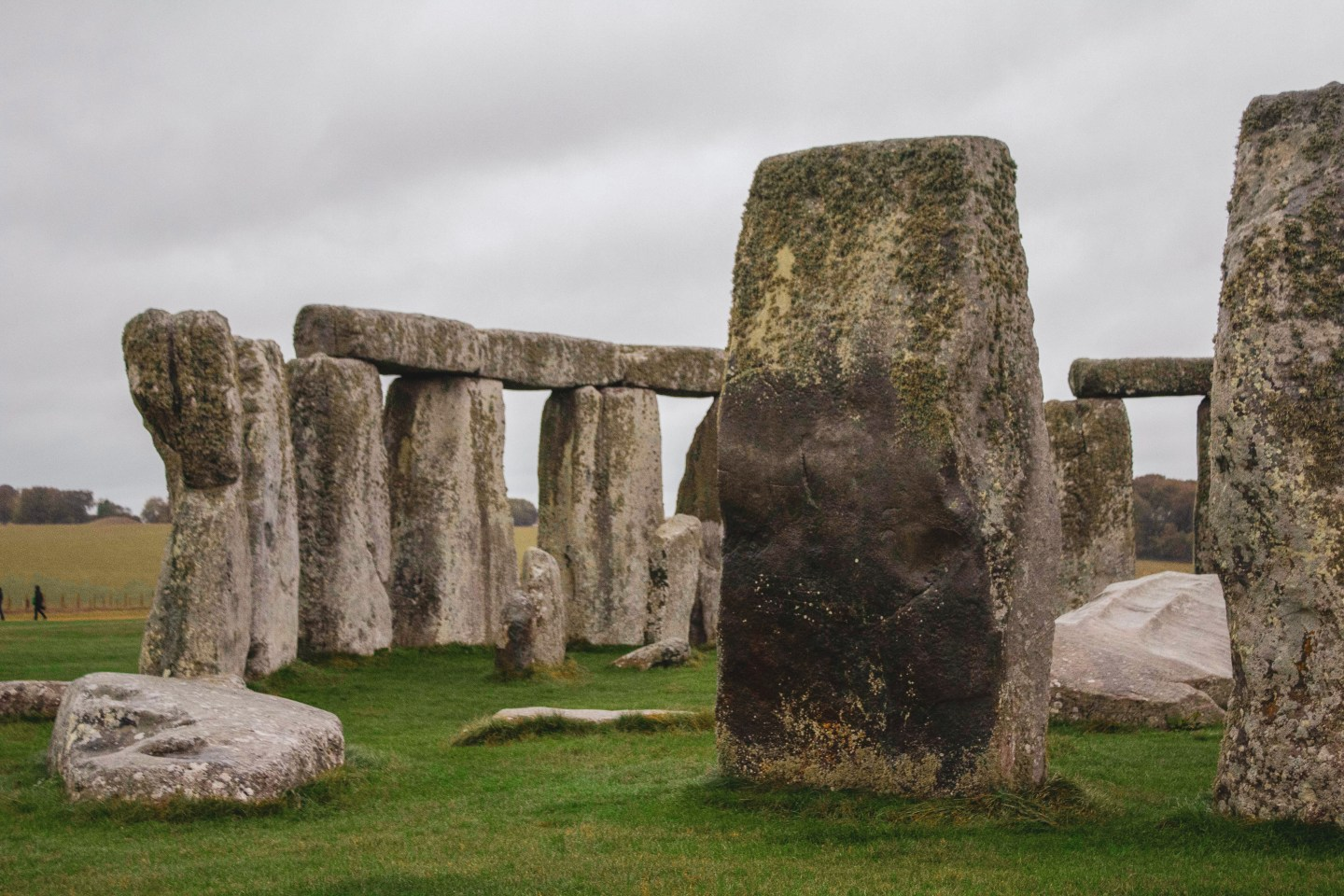 Close up of some of the stones of Stonehenge