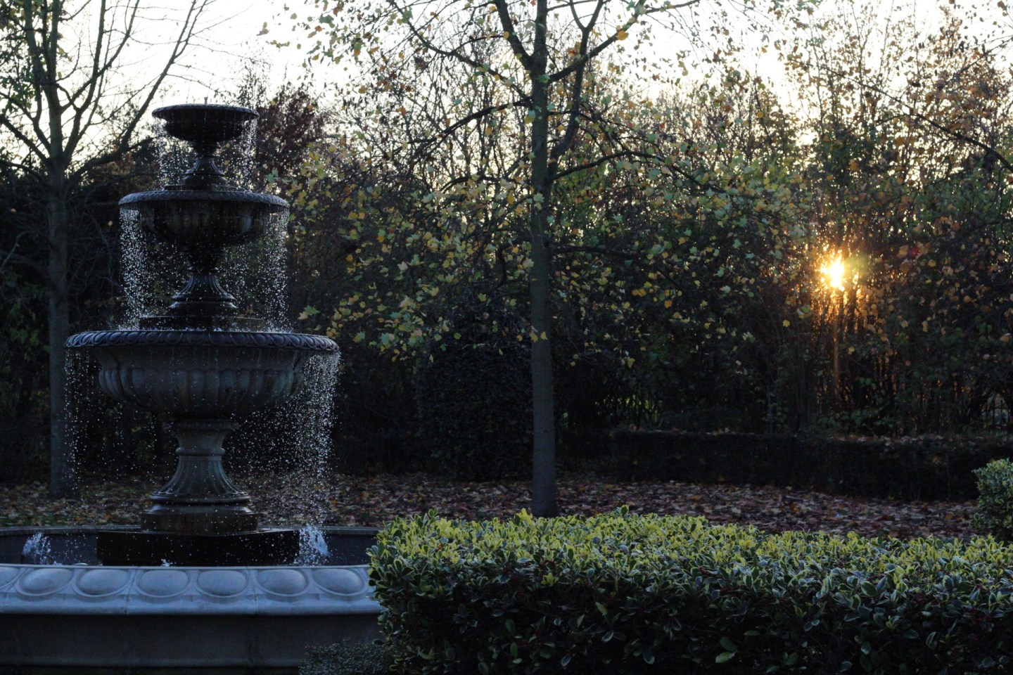 Fountain in front of sunset peeking through trees in London park