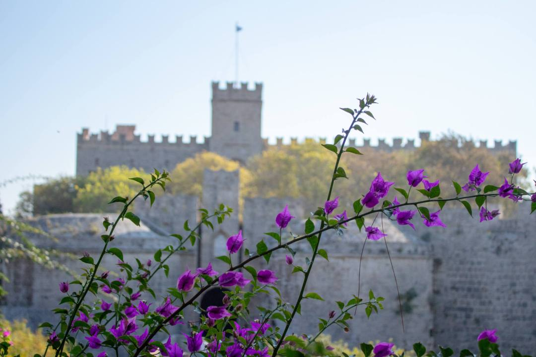 Flowers outside Rhodes Old Town walls