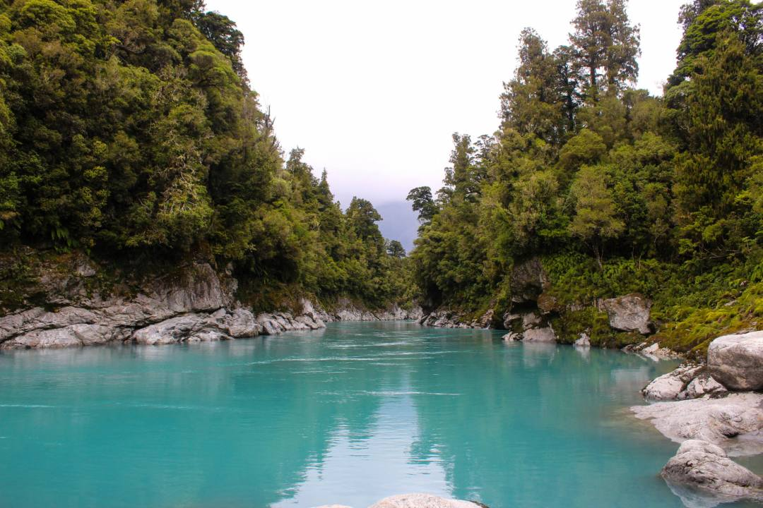 view over vivid blue waters surrounded by trees