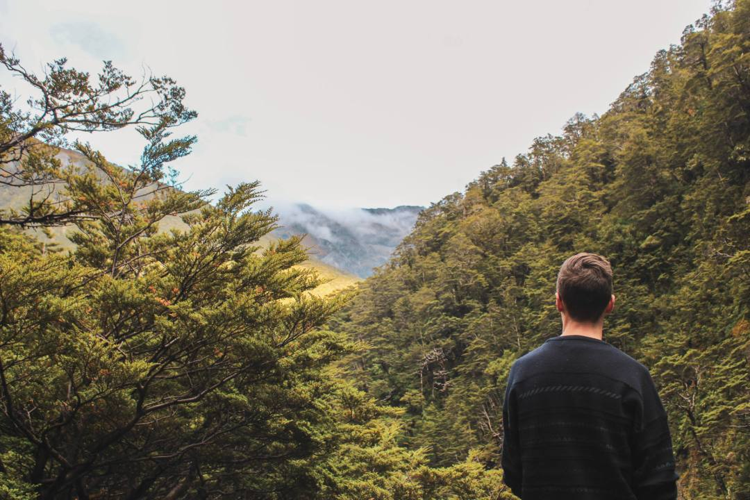 Man overlooks forest and cloudy mountains