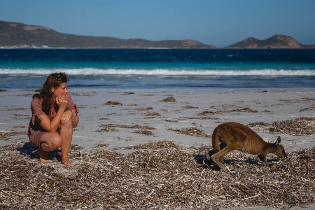 woman watches Lucky Bay kangaroo