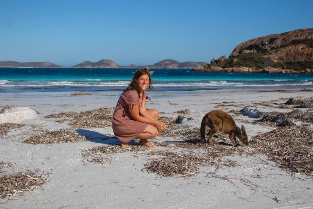 Wild kangaroo on beach with woman