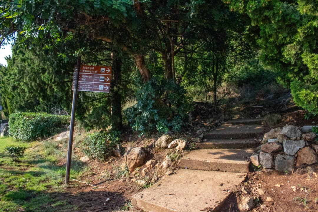 start of mount srd walking track