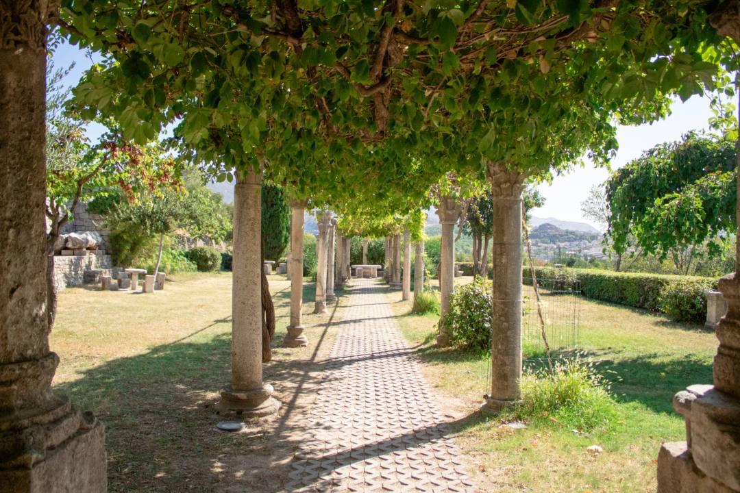 pillars hold up vines over garden