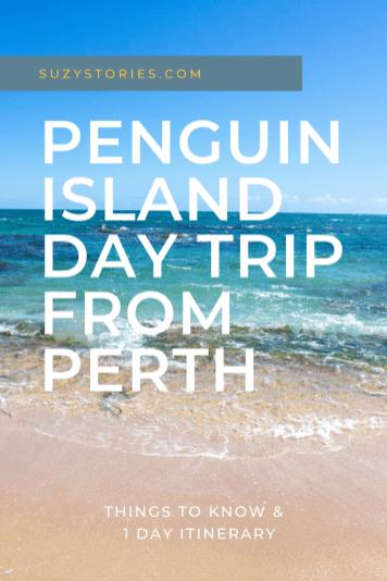 beach on penguin island