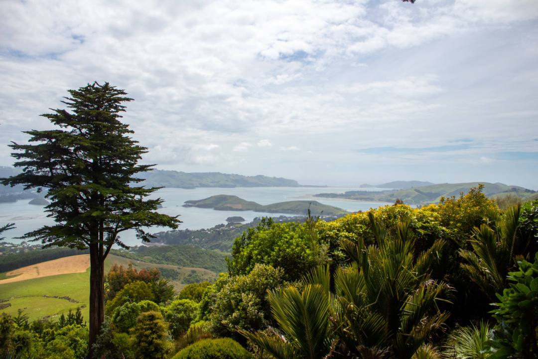 Views over Otago Peninsula from Larnach Castle
