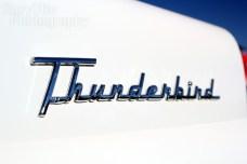 Don & Susan Bates' '56 Thunderbird (emblem)