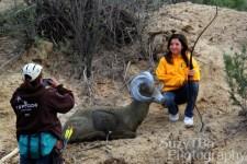 Black Canyon Archers Olathe 3D Shoot 2014