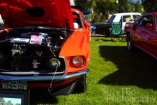 1969 Ford Mustang- Mark Ricard, Centennial, Co