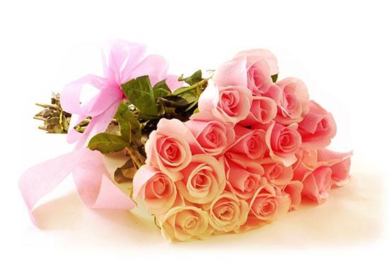 Картинки по запросу цветі