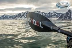 (C)Icebearsandislands-0419