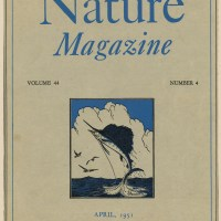 Magazine Covers -- 1950-1959