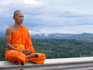 monaco-zen