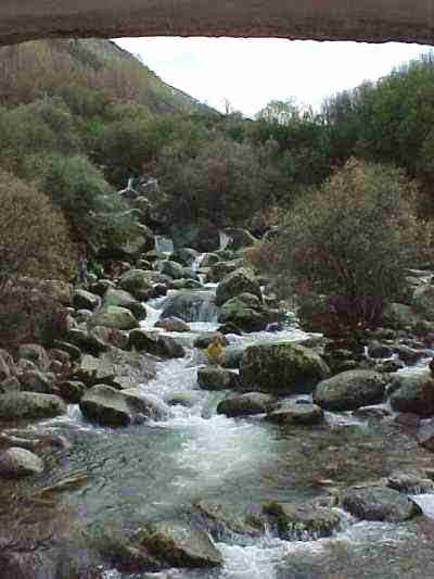 A wandering mountain stream