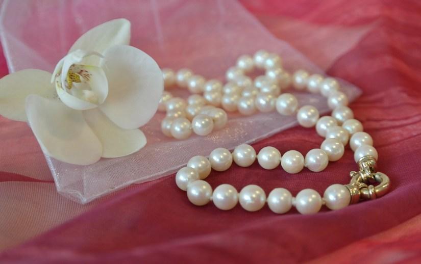orchidej a perlovy nahrdelnik na organze