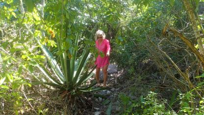 Tough going hiking Green Island - too many prickly things