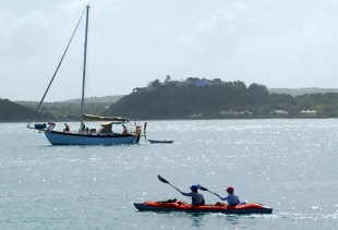 Alberio crew kayaking at Green Island