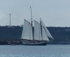 Liberty Clipper, sails flying