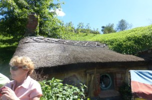 Hobbiton 4 -- This is the only Hobbit with a thatched roof. They brought craftsman from England in order to build the roofs.