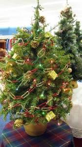 A close up of a small Christmas tree for sale at St. Vincent de Paul's Fond du Lac.