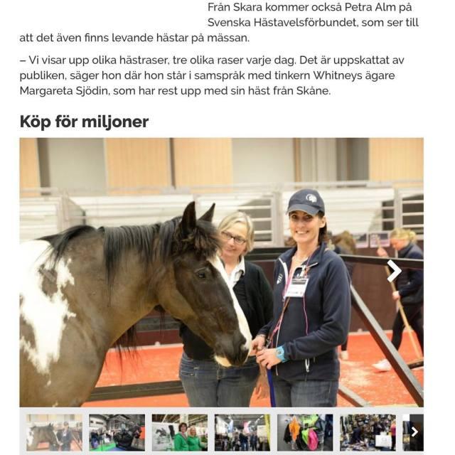 Vi behver en ponny till msspaddocken p EuroHorse i Gteborghellip