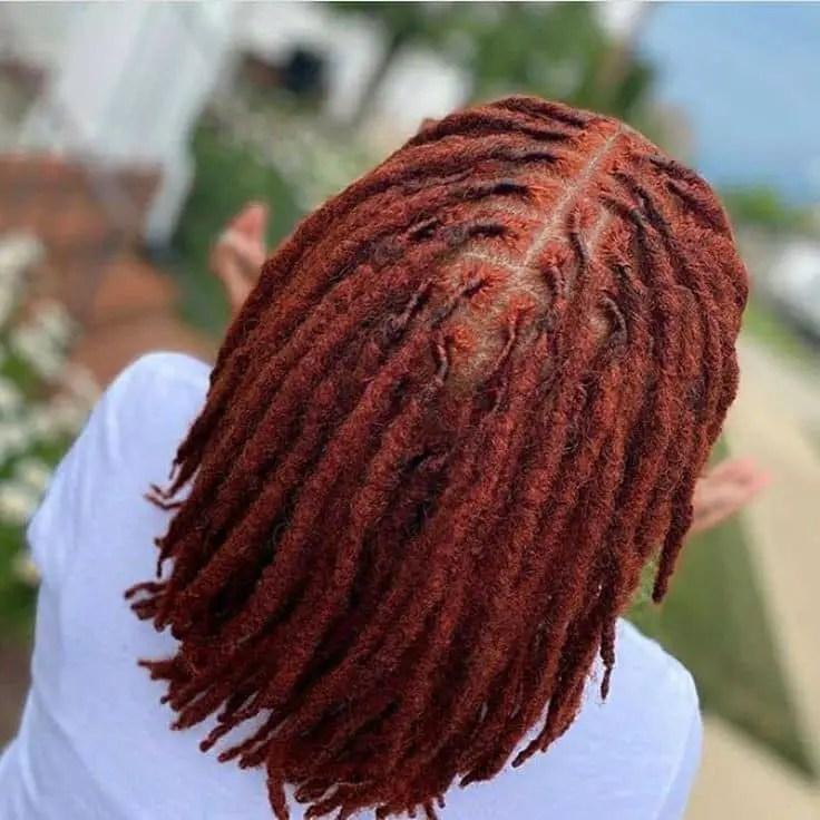 backshot of colored hair