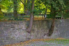 Bad Pyrmont Mauer am Schloss 2012