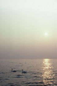 Gardasee 1986